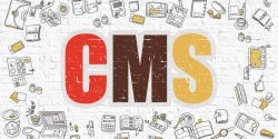 6 Reasons to Love Smaller CMS